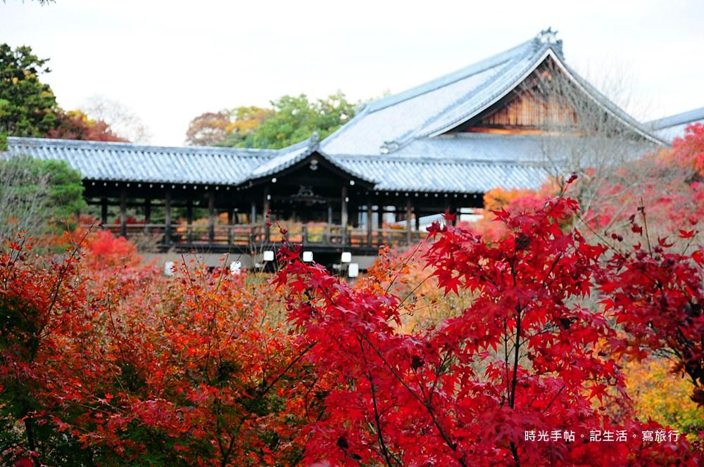 京都楓葉-東福寺 (2)