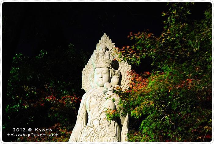 永觀堂夜楓 (12).jpg