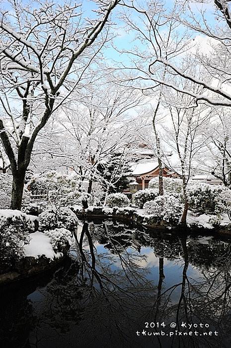 雪清水 (10).jpg