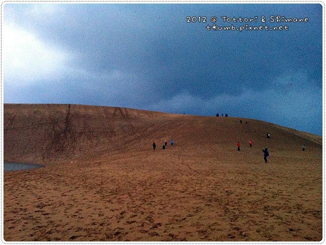 鳥取沙丘 (3).jpg