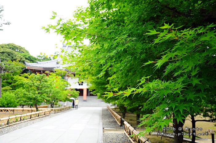 2016智積院 (5).JPG