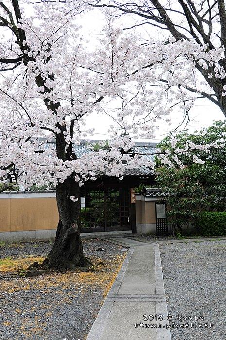 妙蓮寺 (4).jpg