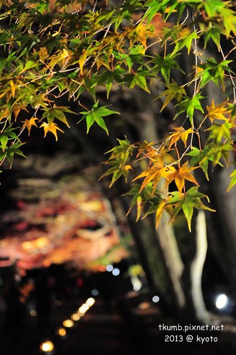毘沙門堂夜間點燈 (3).jpg