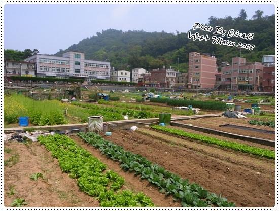 蔬菜公園+北海坑道